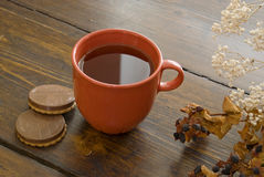 Cup of tea. With sweets Royalty Free Stock Photography
