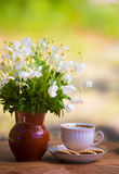 Cup of tea and anemones Stock Image