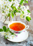 Cup of tea with apple blossom. Cup of tea and apple blossom in glass on the rustic background Stock Images