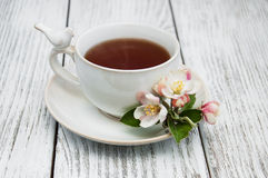 Cup of tea with apple blossoms Stock Images