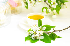 Cup of tea and apple flowers Stock Photo