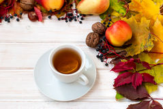 Cup of tea, apples, pears, nuts and autumn leaves. autumn Still Stock Photos