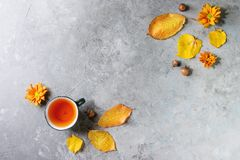 Cup of tea with autumn leaves. Cup of hot tea decorated by yellow autumn leaves, aster flowers and acorns over grey texture background. Flat lay, space. Seasonal stock photos