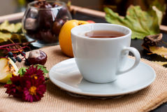 Cup of tea with autumn leaves of wild grapes Stock Images