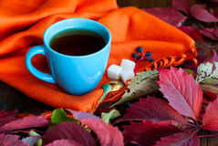 Cup of tea with autumn leaves of wild grapes Royalty Free Stock Photos