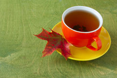 Cup of tea and autumn maple leaf Stock Image