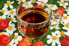 Cup of tea on background of chamomile and strawberries Royalty Free Stock Photo