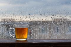 tea on  background of  window with raindrops at sunset stock photography