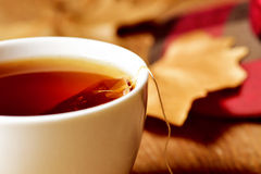 A cup with a tea bag Royalty Free Stock Photography