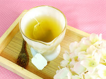 Cup of tea bag with wooden spoon Royalty Free Stock Photos