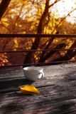 Cup of tea on balcony with nature view. Cup of autumn tea. royalty free stock photography