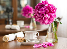 A cup of tea and biscuits royalty free stock image