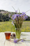 A cup of tea, biscuits and wild irises. On a wooden table close-up outdoors Stock Photo