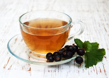 Cup of tea and black currant Royalty Free Stock Image