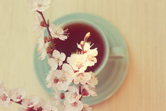 Cup of tea with blooming cherry twig Royalty Free Stock Photo