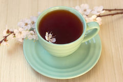 Cup of tea with blooming cherry twig Royalty Free Stock Photos