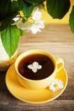 Cup of tea and a blooming Jasmine Royalty Free Stock Photography