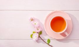 Cup of tea and blossoming Almond Prunus triloba branch on light pink wooden table and copy space for text Royalty Free Stock Images