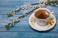 Cup of tea with blossoms on blue wooden tabletop stock photos