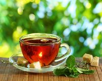 Cup of tea and teapot. Stock Images