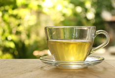 Cup of tea on a blurred background Stock Photo