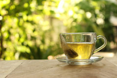 Cup of tea on a blurred background Stock Image