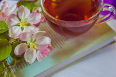 Cup of tea on book with apple tree blossom branches Stock Images