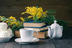 Cup of tea with book and sweets Stock Images