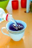 Cup of tea and bottle with water Stock Photography