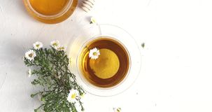 Cup of tea and bowl of honey. From above view of glass cup of tea and bowl of honey decorated with flowers of camomile on white background stock video footage