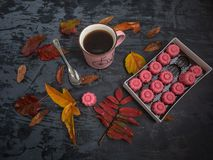 A cup of tea, a box of chocolates strawberry fudge surrounded by colored autumn leaves royalty free stock photos