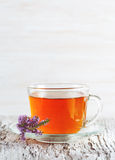 Cup of tea and branch of heather Stock Images