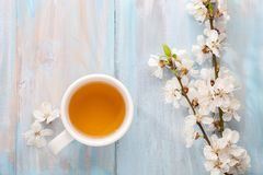 Cup of tea and branches of blossoming apricot on old wooden shabby background stock image