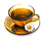 Cup of tea with a camomile Royalty Free Stock Photography