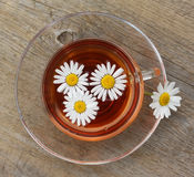 Cup of tea with camomile on old wooden table Royalty Free Stock Photography