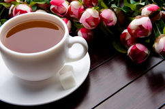 The cup of tea in catering concept Stock Image