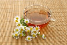 Cup of tea and chamomile Stock Images