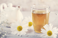 Cup of tea with chamomile flower Stock Image