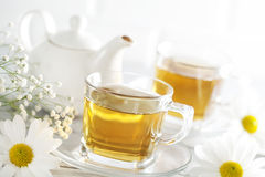 Cup of tea with chamomile flower Royalty Free Stock Photography