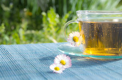 Cup of tea with chamomile Royalty Free Stock Images