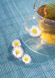 Cup of tea with chamomile flower Stock Photo