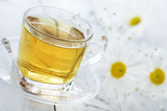 Cup of tea with chamomile flower Stock Images