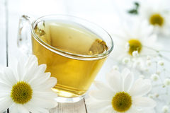 Cup of tea with chamomile flower Royalty Free Stock Photo