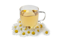 Cup of tea with chamomile flowers Royalty Free Stock Photos
