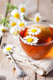 Cup of tea with chamomile flowers Stock Photos