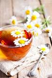 Cup of tea with chamomile flowers Stock Image