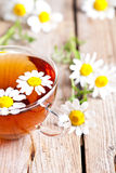 Cup of tea with chamomile flowers Royalty Free Stock Image