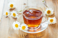 Cup of tea with chamomile Stock Photography
