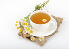 Cup of tea and chamomiles Stock Images
