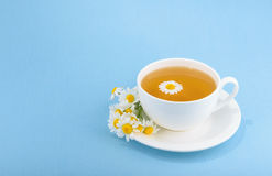 Cup of tea and chamomiles Stock Image